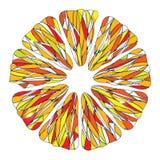 Citrusvruchtentextuur vector illustratie