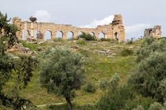 citry kolumny entrance starych rzymskich volubilis Obrazy Royalty Free