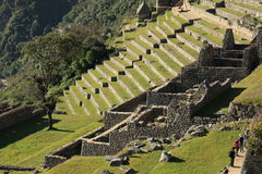 Città abbandonata di Machu Picchu Fotografia Stock Libera da Diritti