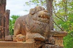 Città antica della camera del Consiglio del ` s di Polonnaruwa - patrimonio mondiale dell'Unesco dello Sri Lanka Fotografia Stock