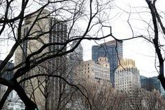 Città attraverso la sosta Immagini Stock Libere da Diritti