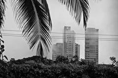 Città in bianco e nero Immagini Stock Libere da Diritti
