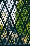 Città degli alberi della natura di Mannheim della finestra della parete urbana fotografia stock