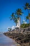 Città del Brasile - Recife immagine stock libera da diritti