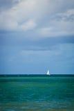 Città del Brasile - Recife fotografia stock libera da diritti