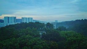 Città della foresta, Singapore Fotografie Stock