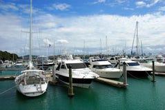 Città delle vele, Auckland Immagine Stock Libera da Diritti