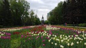 Città di Almaty Fotografia Stock
