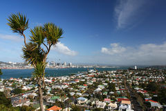 Città di Auckland Fotografia Stock Libera da Diritti