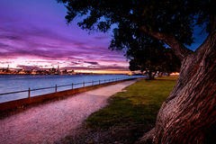 Città di Auckland dalla riva del nord Fotografie Stock Libere da Diritti