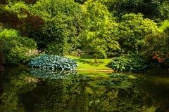 Città di Bellagio sul lago Como, Italia Regione della Lombardia Punto di riferimento famoso dell'italiano, parco di Melzi della v Immagini Stock Libere da Diritti