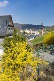 Città di Cochem, Germania Fotografia Stock Libera da Diritti