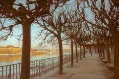 Città di Dresda Centro storico Sera di autunno a Dresda fotografie stock libere da diritti