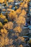 Città di Edmonton di autunno fotografia stock