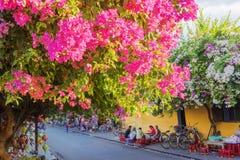 Città di Hoi An Ancient, provincia di Quang Nam, Vietnam Immagini Stock Libere da Diritti