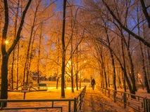 Città di inverno del passaggio pedonale di notte Fotografia Stock Libera da Diritti