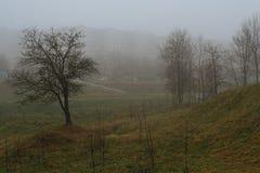 Città di Minsk Immagini Stock Libere da Diritti