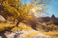 Città di Uchisar in Cappadocia La Turchia Fotografie Stock
