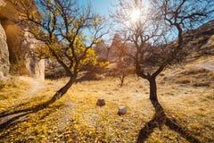 Città di Uchisar in Cappadocia La Turchia Immagini Stock