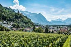 Città di Vaduz, la capitale del Liechtenstein Fotografia Stock Libera da Diritti