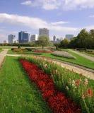Città di Vienna e parco di Danubio immagini stock libere da diritti