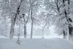Città dopo la bufera di neve Vista sulla cattedrale di presupposto Fotografie Stock Libere da Diritti