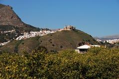 Città e limoni bianchi, Alora, Spagna. Immagine Stock