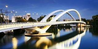 Città ed il fiume Rodano di Lione Fotografia Stock