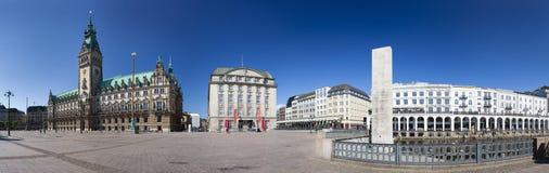 Città Hall Panorama di Amburgo, editoriale Fotografie Stock Libere da Diritti