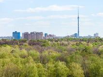 Città moderna e legno verde in primavera Fotografie Stock