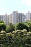 Città nella foresta Fotografia Stock