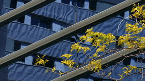 Città sostenibile stock footage