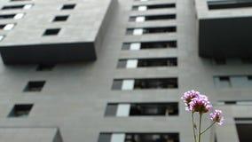 Città sostenibile video d archivio