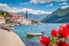 Città storica di Perast alla baia di Cattaro di estate, Montenegro fotografia stock libera da diritti