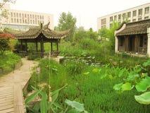 Città universitaria cinese Immagine Stock Libera da Diritti