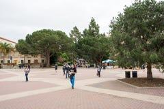 Città universitaria del UCLA in Westwood Immagini Stock Libere da Diritti