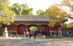 Città universitaria dell'Università di Pechino Fotografie Stock