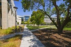 Città universitaria, Uc San Diego Immagini Stock Libere da Diritti