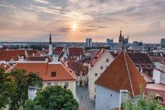 Città Vecchia Hall Tallinn Estonia fotografia stock libera da diritti
