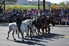 2016 cittadino Cherry Blossom Parade in Washington DC Immagine Stock Libera da Diritti
