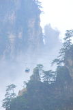 Cittadino Forest Park di Zhangjiajie Fotografia Stock Libera da Diritti