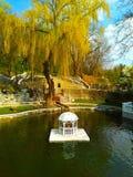 City湖,卡梅涅茨波多尔斯基,乌克兰 免版税库存照片