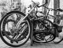 City bikes on the street stock image