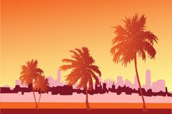 City. Vector image with nice palms Stock Images