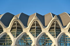 The city of Arts and Science in Valencia. Royalty Free Stock Photo