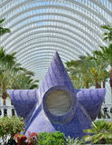 City of Arts and Sciences. A sea star placed in the City of Arts and Sciences in Valencia, Spain Stock Image