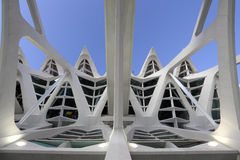 City of Arts and Sciences, Valencia Royalty Free Stock Image