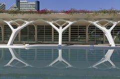 The City Arts and Sciences Valencia, Spain stock photo