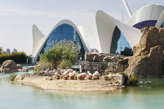 The city of the Arts and Sciences in Valencia, Spain Stock Photography