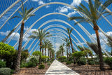 City of Arts and Sciences. Valencia, Spain – June 8, 2013: L'Umbracle in the City of Arts and Sciences in Valencia.  L'Umbracle is a landscaped walk containing Stock Images